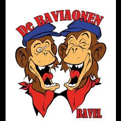 Stichting de Baviaonen