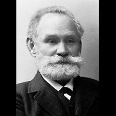 J.C. Pavlov