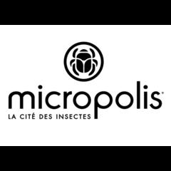 Micropolis, La Cité des Insectes