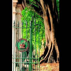 Brisbane Botanic Gardens - City Botanic...