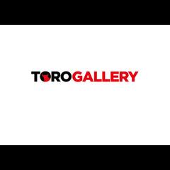 Toro Gallery_Bodegas Osborne