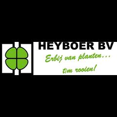 Heyboer