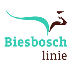 Biesboschlinie