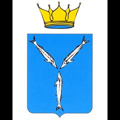 МО «Город Саратов»