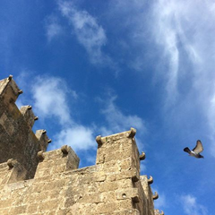 Castello Grifeo Partanna